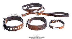Hammerpreis-Halsband-DOGArtist-CROCO-BROWN-35-x-2-cm-Design-aus-Schweden