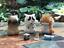 Lam Toys Funny Worried Cat Anxious Rare Design Mini Figure Art Design Figurine