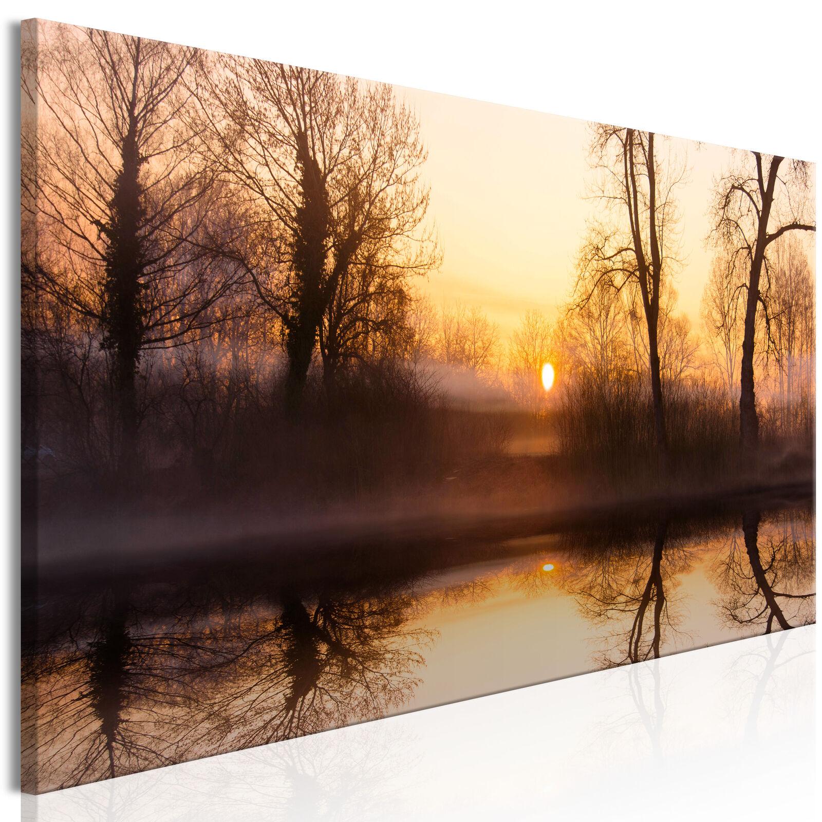 Wandbilder xxl Wald Landschaft Nebel Leinwand Bilder Wohnzimmer c-C-0185-b-a