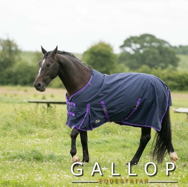 Gallop Alabama Trojan Lt Weight No Fill Turnout Rug Perfect For Spring