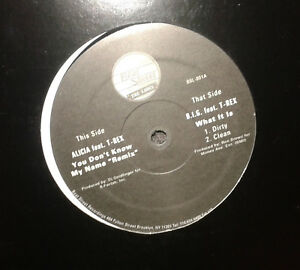 Details about ALICIA KEYS T-REX B I G  You Don't Know My Name UNOFFICIAL  REMIX 12 INCH BSL-001