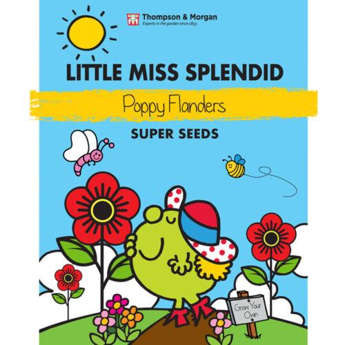 Little Miss Splendid Poppy Flanders Seeds Annual Flower 1 Packet 2000 Seeds T/&M