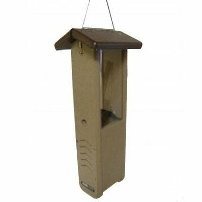 Birds Choice Recycled Woodpecker Feeder Brown Bird Feeder SNWPB
