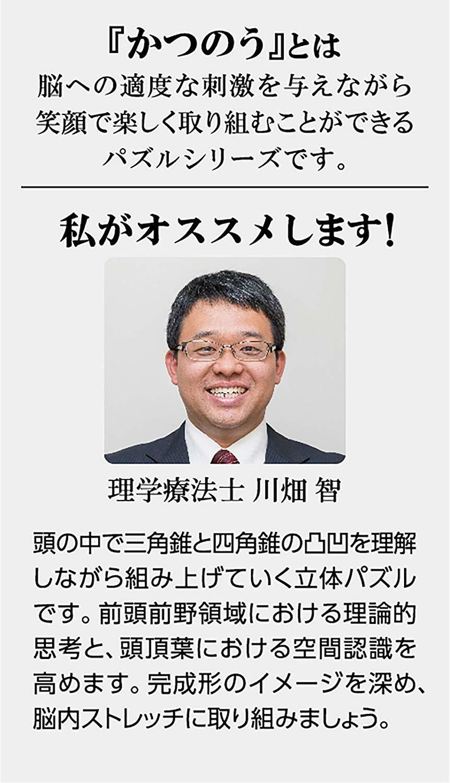 Hanayama Katsunou Pazzle STAR Brain Teasers SOLID STAR Pazzle Japan 01b844