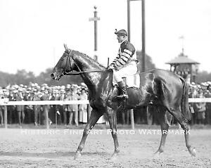 HORSE RACING VINTAGE PHOTO MAN O WAR GREATEST RACE HORSE EVER 1920 8x10 #22093