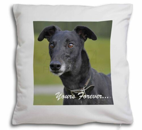 AD-GH8y-CPW Black Greyhound /'Yours Forever/' Soft Velvet Feel Cushion Cover With