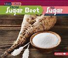 From Sugar Beet to Sugar by Lisa Owings (Paperback / softback, 2015)