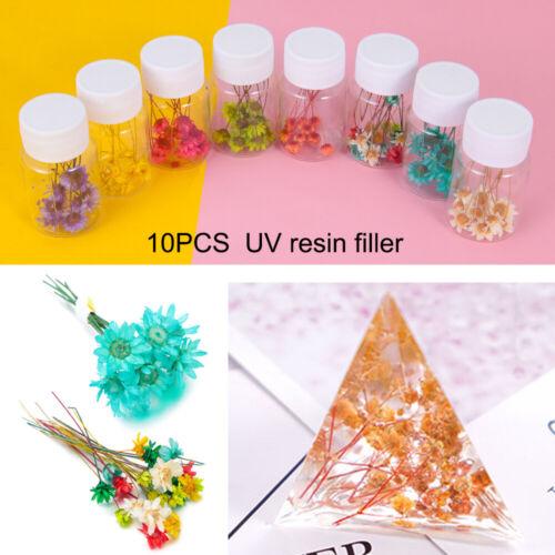 DIY craft Dry Flower Filling Materials Crystal uv accessories Resin filler