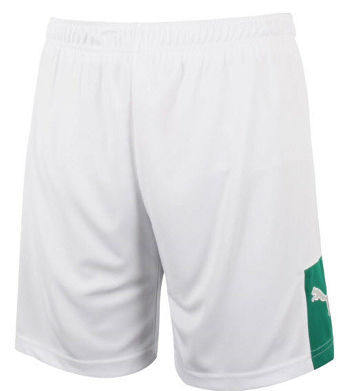 631cca3b36947 Puma Men Storm WB Shorts Pants Training White Running Uniform GYM Pant  89604202