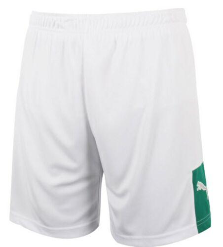 Puma Men Storm WB Shorts Pants Training White Running Uniform GYM Pant 89604202