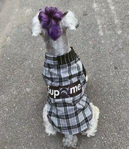 Gris Crème X Chrrota Suprême Pet Dog Shirt Vêtements D'été Pour