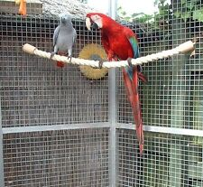NEW LARGE SISAL ROPE PARROT PERCH TOY