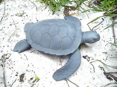 "Latex sea turtle mold with plastic backup concrete plaster mold 8"" x 8"" x 2""H"