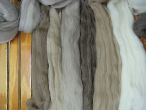 Natural-coloured-Dreamee-WA-Wool-Top-Roving-100gm-Spin-Felt-Spinning-Felting