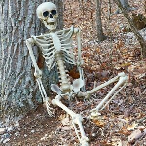 165cm-Life-Size-Human-Skeleton-Bones-posable-Halloween-Hanging-Decorations-Prop