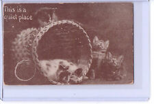 VINTAGE CAT KITTENS REAL PHOTO POSTCARD THIS IS A QUIET PLACE 1912 HAND DATE