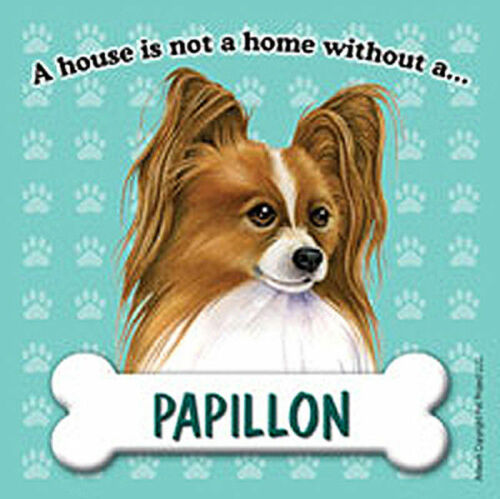 House Is Not A Home Brown Papillon Magnet