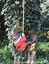 Grand-Gnome-amant-cadeau-arbre-escalade-pendaison-Corde-Ornement-Decoration-Sculpture miniature 7