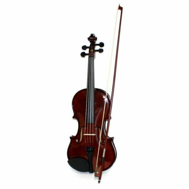 Palatino Campus Student Violin Outfit Vn 350 Lesson Book With 2cds For Sale Online Ebay