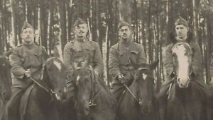 WW1-BELGIAN-CAVALRY-WAR-HORSES-ANTIQUE-PHOTO-RPPC-POSTCARD