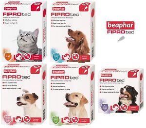 NEW-Beaphar-FIPROtec-Flea-amp-Tick-Spot-On-Solution-Small-Medium-Large-Dogs-amp-Cats