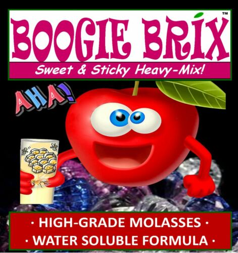 Boogie Brix 4LB