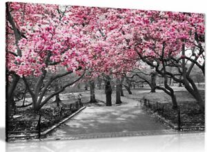 Black-amp-White-Wall-Art-Pink-Blossoms-Canvas-Wall-Art-Picture-Print