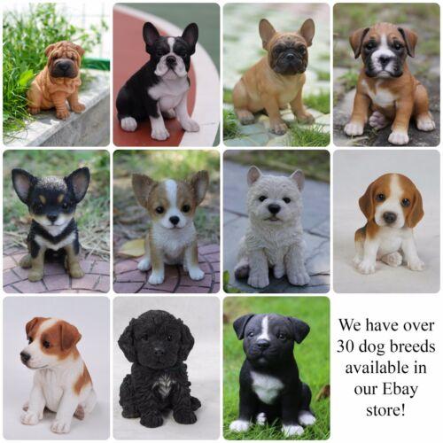 2of3 Dog Puppy Pet figure résine Life Like STATUE NEW Shelley B des navires de USA