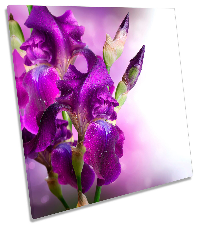 púrpura Floral Flor LONA parojo arte Foto impresión Cuadrado Cuadrado Cuadrado 029699