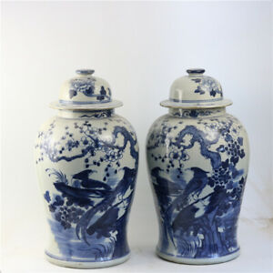 A Pair Beautiful Chinese Blue&White Porcelain Flowers Bird Hat-Covered Jar