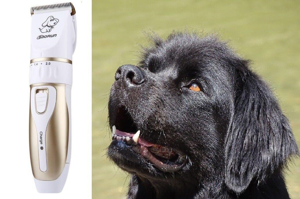 Rasenmäher Canine PRO professionelle drahtlos für Ton Neu großer Hund Mähen