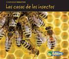 Las Casas de los Insectos by Charlotte Guillain (Hardback, 2010)