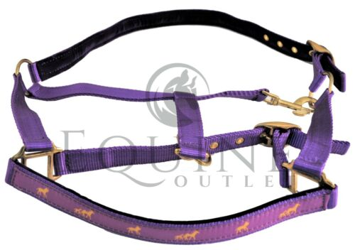 6 Colours All sizes Padded Horse Headcollar with Gold Horse Detail