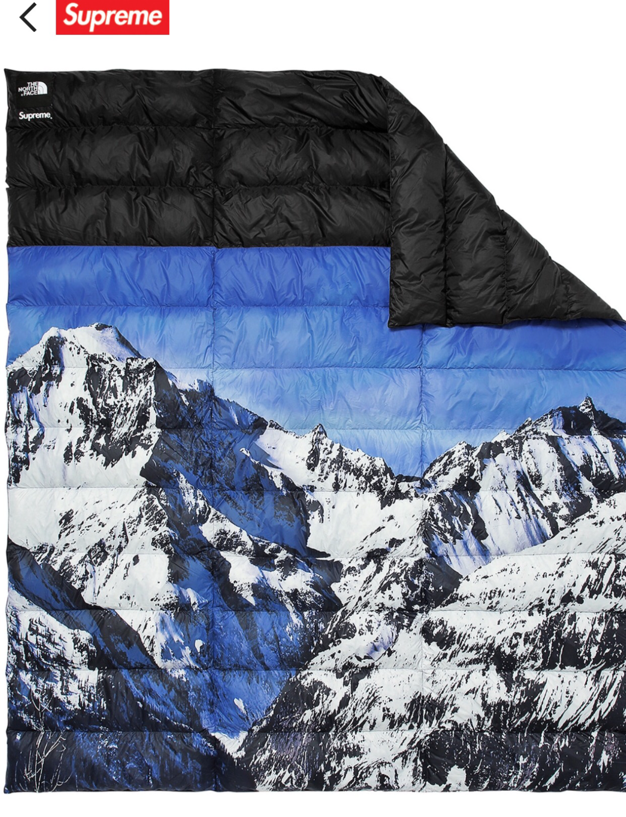 Supreme x The North Face Mountain nupste CouGrünure Neuf avec étiquettes