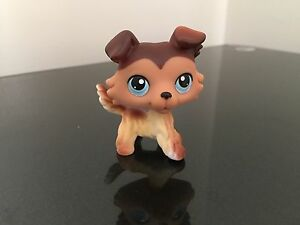 Littlest Pet Shop LPS Collie # 58 Sage Blue Eyes USA Seller