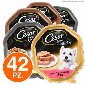 Mix Cesar: 42 Vaschette da 150g assortite in 6 Gusti misti - Ricette per cani