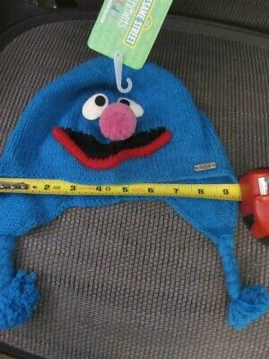 Cashmere Grover Unlined Beanie Hat Knit Kids Cap Girls Boys Sesame Street Delux Ebay