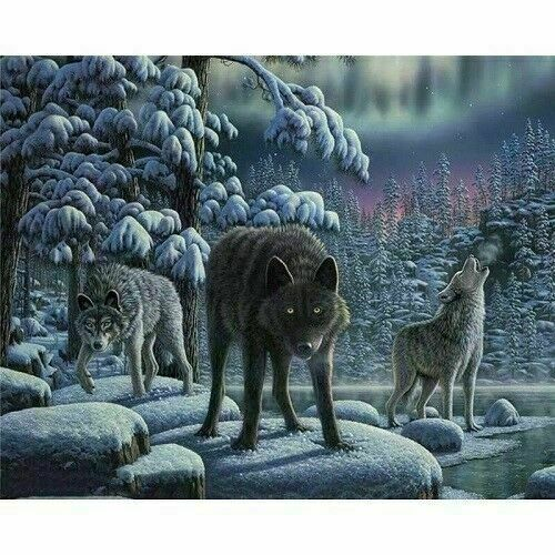 Animals DIY Paint By Number Acrylic Oil Painting Canvas Adult Children Beginners