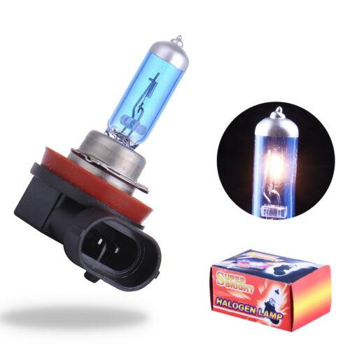 2x H11 12V 55W Xenon White 5000k Halogen Blue Car Headlight Lamp Globes Bulb HID