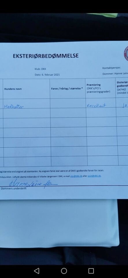 Staff tilbydes til avl adgang til stamtavle+
