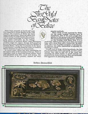 GALEANDRA ORCHID 22kt Gold $10 Belize  1981 Banknote RARE