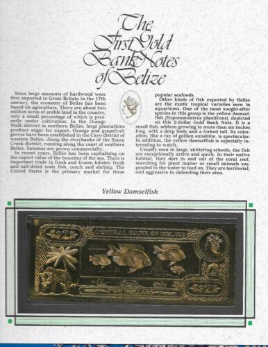 RARE UNC 22kt Gold $2 Belize 1981 Banknote YELLOW DAMSELFISH