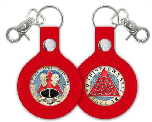 AA Program Red Rubber Key Fob Coin//Medallion Holder W//Clear Plastic Window