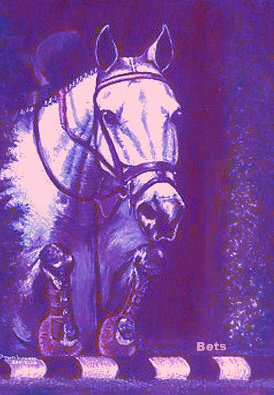 HORSE PRINT Giclee JUMPER  Art NO FAULTS artist BETS  6 COLORS print size 14 X 19  authentic