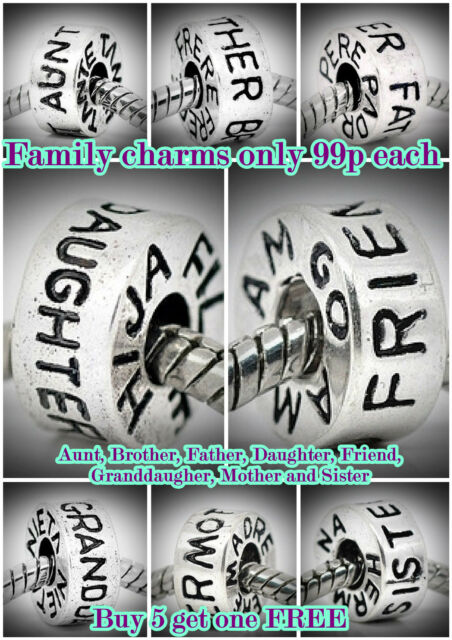 SILVER FAMILY CHARMS/BEADS-EUROPEAN BRACELETS *BUY 5 GET ONE FREE* CHOICE OF 8