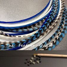 Feathers Hair Extensions Kit Lot 20 Grizzly Natural White Royal Blue Devils KIT