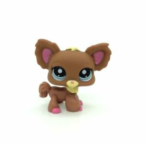 Littlest-Pet-Shop-1623-Brown-Chihuahua-Puppy-Dog-Blue-Eyes-Lose-LPS-USA-Seller