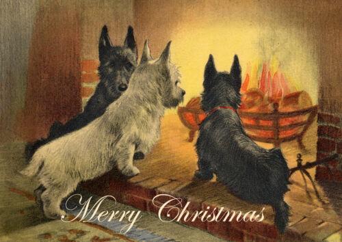 SCOTTISH TERRIER WESTIE FIRE SCOTTIE SINGLE DOG PRINT GREETING CHRISTMAS CARD