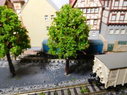 75 mm hoch 5 maigrüne Laubbäume
