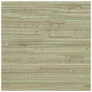 Wallpaper-Real-Natural-Grasscloth-Tan-on-Pale-Green-Textured-Sea-Grass
